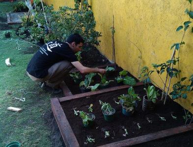 Huerto-jardín en Cholula, México
